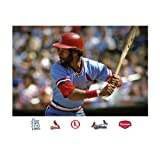 MLB St. Louis Cardinals Ozzie Smith Mural Wall Graphic
