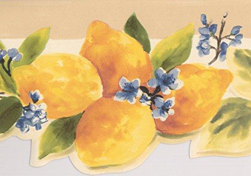 Vintage Red Apples Yellow Lemons Blue Flowers Brown White Wallpaper Border Retro Design, Roll 15' x 5.25''