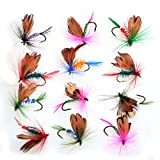 Piscifun 12pcs Dry Flies/ 40pcs Wet Flies Fly Fishing flies Kit Bass Salmon Trouts Flies Floating/Sinking Assortment with Fly Box