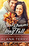 What Dreams May Fall: A Sweet Dreams Christian Romance