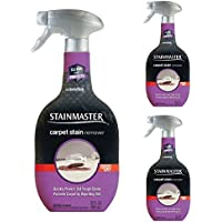 Stainmaster Carpet Care Stain Remover, 22 oz (3 pack)