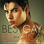 Best Gay Erotica 2014 | Larry Duplechan (editor),Joe Mannetti (editor)