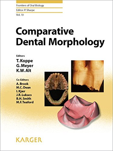 13: Comparative Dental Morphology: 14th International Symposium on Dental Morphology, Greifswald, August 2008: Selected papers (Frontiers of Oral Biology, Vol. 13)