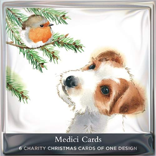 Pack of 6 Puppy & Robin Charity Christmas Cards Supports Multiple Charities (Christmas Cards Charity Robin)