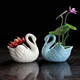 2pcs Swan white and blue Ceramic Flower Planters / Succulent Plant Pots,Home Office Decor Planter(2, Swan)