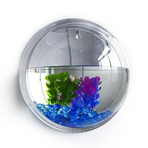 Wall Mounted Fish Tank Bowl Vase Aquarium Plant Pot Home Decor by Wall Decor M and F