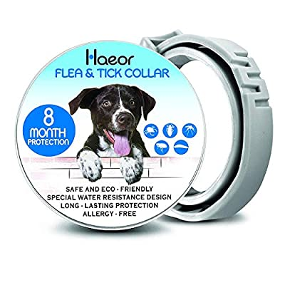 HAEOR Flea Collar and Tick Control for Dogs - Enhanced Natural Ingredients for Flea Treatment and Tick Repellent - Waterproof and 8 Months Continuous Protection Dogs [2019 Upgrade Version] by JOEOR