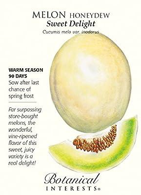 Sweet Delight Honeydew Melon Seeds - 1 gram - Botanical Interests