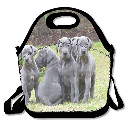 Lunch BagsCustom Personalized School Tote Lunch Box For Girl & Boy Great Dane Cute Dog Insulated Lunch ()