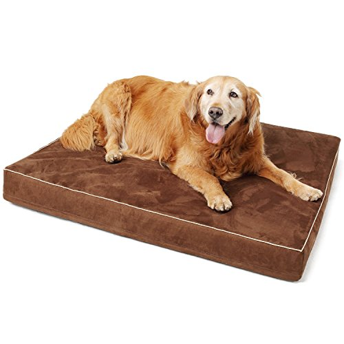 Papa Pet Solid Memory Foam Orthopedic Dog Bed with Durable Waterproof Lining | Removable & Washable Cover for Large Dogs | Prevent and Relieve Arthritis & Hip Dysplasia of Pets For Sale