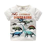 Clearance Sale Little Boy Toddler Kids Baby Summer Short Sleeve Tops Dinosaur Print Tee Shirts T-Shirt Clothes (B, 18M)