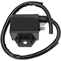 281-79401-01 226-70130-08 226-79491-11 226-79430-31 OakTen Replacement Ignition Coil for Robin EY15