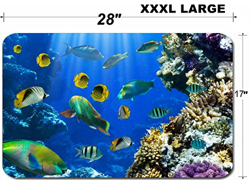 Liili Large Table Mat Non-Slip Natural Rubber Desk Pads Photo of a tropical Fish on a coral reef IMAGE ID 11317190