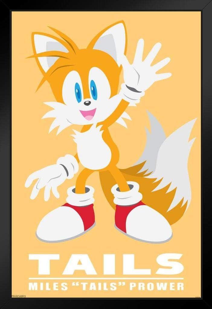 Amazon Com Pyramid America Sonic The Hedgehog Tails Sega Video Game Gaming Cool Wall Decor Art Print Poster 12x18 Posters Prints