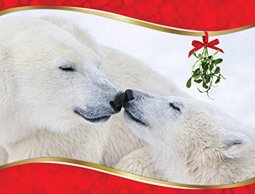 Eskimo Kisses Polar Bear Christmas (Polar Kiss)