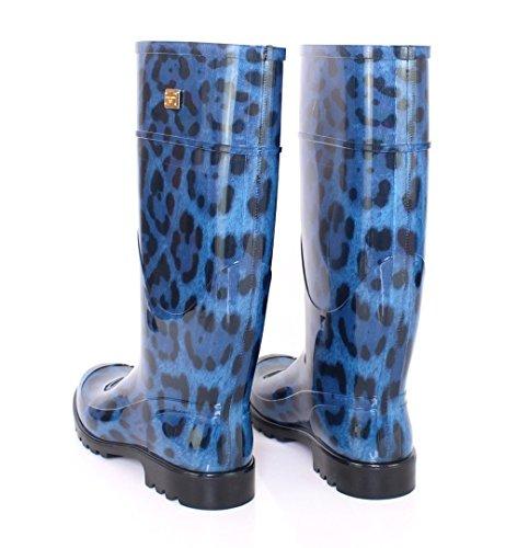 Rain Leopard Shoes Gabbana Blue amp; Boots Rubber Dolce Wellies Aw74Xqt