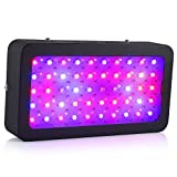Ledgle LED Grow Light 50X5W Full Spectrum Plant Grow Light for Indoor Plant Growing Review