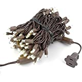 34 Foot 100 Light LED Outdoor Christmas Mini Light Set, Warm White, Brown Wire