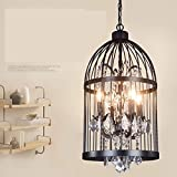 Retro Chandeliers Personality Innovative Style Birdcage Chandeliers Minimalist American Rural Study Lounge Restaurant Cafe Lamps, No Light Source, Diameter 35 Rusty