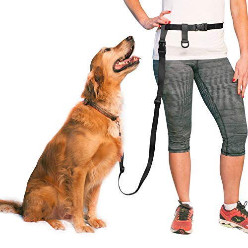 Adjustable Hands Free Dog Leash, Great Waist Leash for Running, Jogging And Training Servive Dog Made in USA by The Buddy System, Regular, Black
