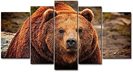 Grizzly Bear Sow Stretched Gallery Style Canvas