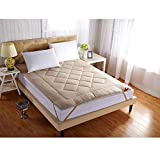 GJFLife Thickened Tatami Mattress Floor Futon, Collapsible Cotton Single Double Sleeping pad Bed Cushion Antibacterial Hypoallergenic Mattress Topper-A 1.2x2.0m