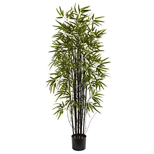 Nearly Natural 5418 Black Bamboo Tree, 5-Feet, Green