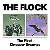 Flock / Dinosaur Swamps by FLOCK