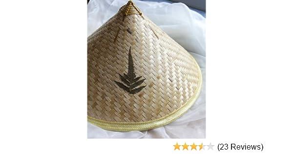 6bb22bcb7de Amazon.com  VietnameseArtwork.com Vietnamese Traditional Hat - Conical Hat  (Non La) with Ferns  Home   Kitchen