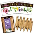 Herbal Tea Herb Garden Seeds - Non GMO USDA Organic Herb Seeds for Planting, 10 Seed Packets Kit, Plant Markers, Wood Box, eBook - Grow Your Own Tea Gifts for Tea Lovers, Gardening Gifts for Gardeners
