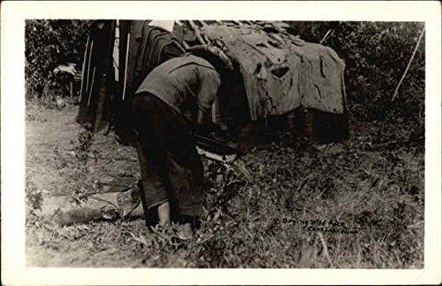 Drying Wild Rice Cass Lake, Minnesota Original Vintage Postcard