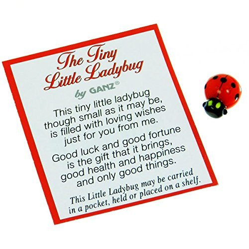 Tiny Bug (The Tiny Little Lady Bug Poem Card and Small Plastic Ladybug - By Ganz (1 Card and 1 Ladybug))