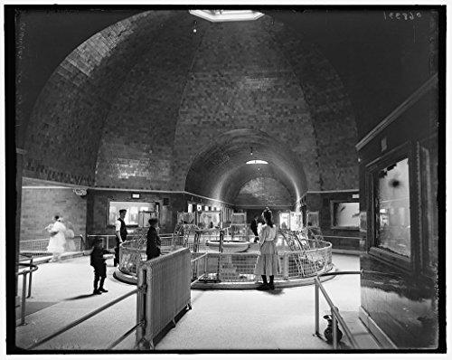 Vintography 40 x 30 Ready to Hang Canvas Wrap Aquarium Belle Isle Park Interior Detroit Mich 1905 Detriot Publishing 74a by Vintography (Image #1)