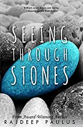 Seeing Through Stones: A Contemporary Young Adult Novel (Swimming Through Clouds Book 2)