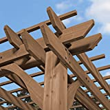 Backyard Discovery Oasis 14 x 10 Pergola Cedar