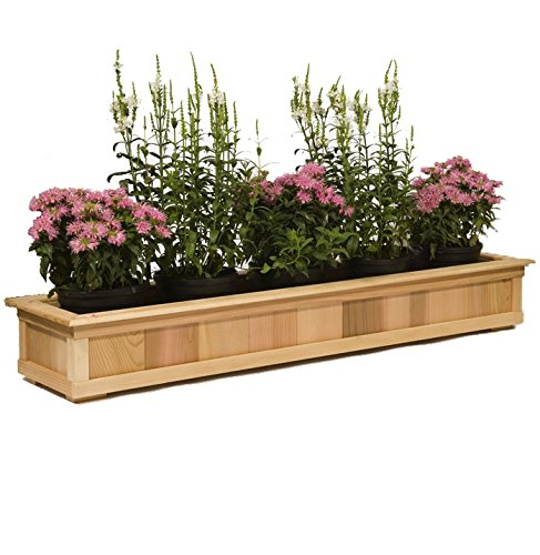 10 3/4'' Wide Cedar Top Rail Planters by Baltic Leisure