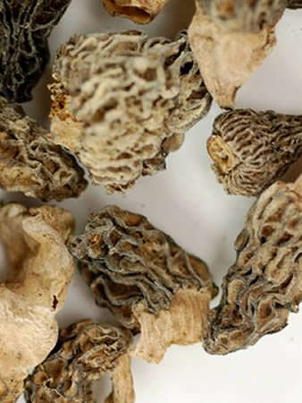 Dried Morel Mushrooms - 4 Oz. Bag - Dehydrated Edible Gourmet Yellow Morchella Esculenta Fungi: AKA Sponge Mushrooms