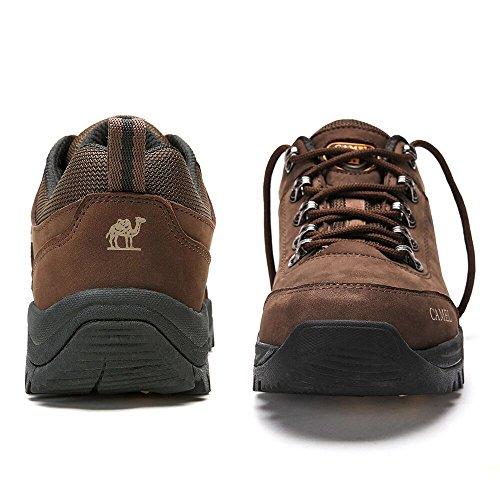 Basses Homme Sport de Trekking Baskets Sneakers Café Outdoor Bottes Hommes Cuir Randonnee Waterpro Chaussure en FRpZxAxwq