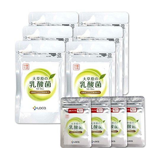 草原の乳酸菌 NS-Max [36粒]◆6袋+32粒増量セット◆ B06XTJ1J9K