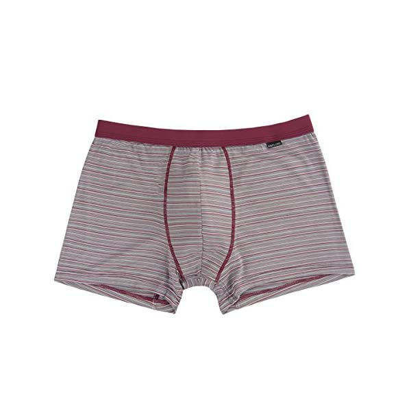 Men's Luxury Bamboo Boxer Underwear Ultra Soft and Breathable Stripes Boxer Briefs 5 Pack