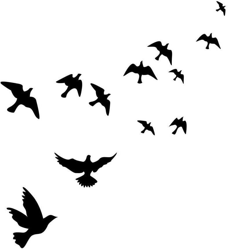 PIVBY Window Alert Bird Stickers - Protection Against Bird collisions, Black (Pack of 12 Decals)