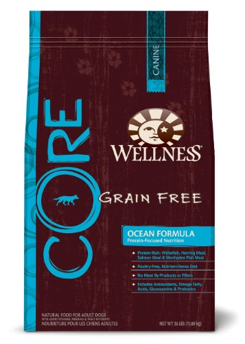Wellness CORE Ocean Formula Dry Dog, 26-Pound Bag, My Pet Supplies