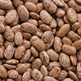Organic Seeds: 5 lbs: Pinto B Seeds - SO C Shell Pinto OR SHELLING Pinto - Non-GMO, Heirloom by Farmerly