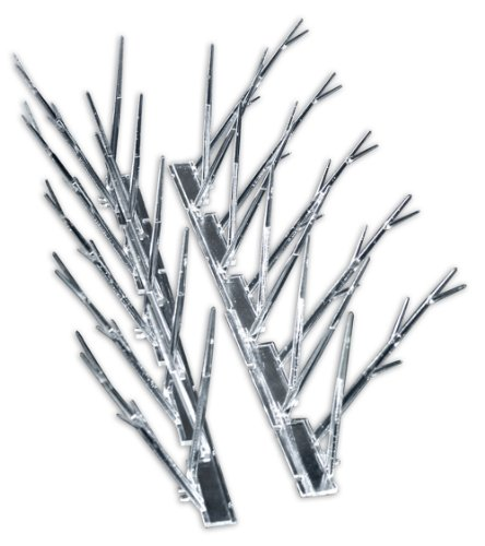 Bird-X Plastic Polycarbonate Bird Spikes, Covers 50 feet (Plastic Cover Trap)
