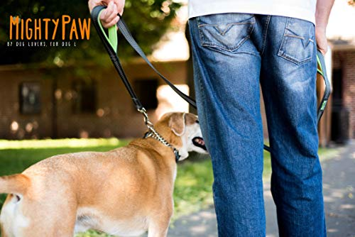 Image of Mighty Paw Martingale Collar, Training Dog Collar, Limited Cinch Chain Pet Gear for No Pull Dog Walking