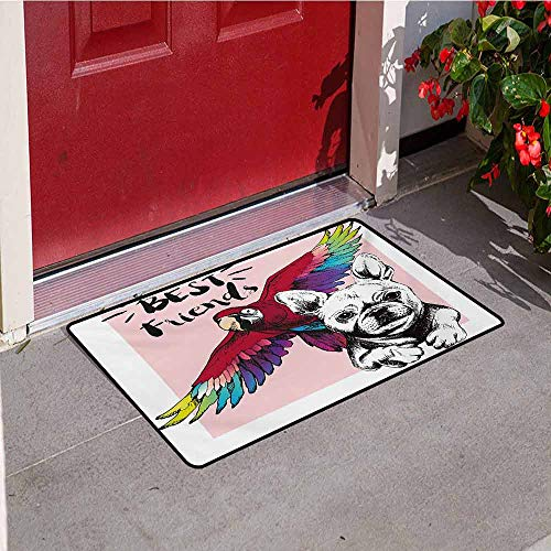 Jinguizi Modern Inlet Outdoor Door mat French Bulldog and Tropical Parrot Figure with Best Friends Phrase Portrait Design Catch dust Snow and mud W35.4 x L47.2 Inch Multicolor