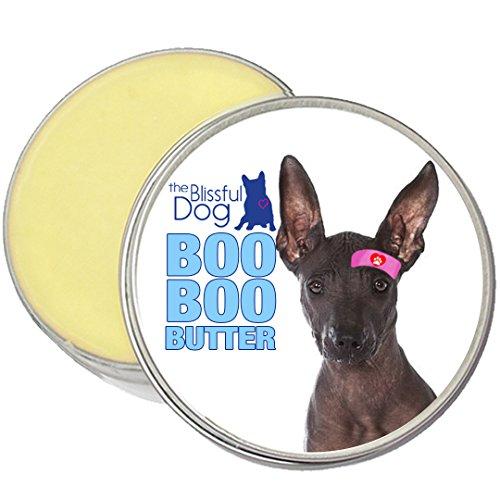 Scrape Salve Tube (The Blissful Dog Xoloitzcuintli Boo Boo Butter, 1-Ounce)