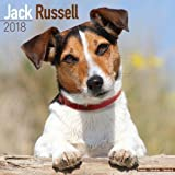 Jack Russell Calendar - Dog Breed Calendars - 2017 - 2018 wall Calendars - 16 Month by Avonside