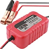 Car Battery Charger agm Battery Charger, 12V Battery Charger 2Amp Battery Smart Microprocessor Controlled Trickle Charger for Car Motorcycle Lawn Mower Marine Scooter Lead Acid Battery