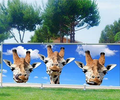 StickersNews Brise Vue, jardín, terraza, balcón Déco Jirafas, 100%, 340 x 132 cm: Amazon.es: Hogar